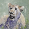 1_Lady-Lion-in-the-Grass-oil