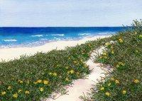 Beach-Blooms