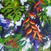 Tropic Garden 2